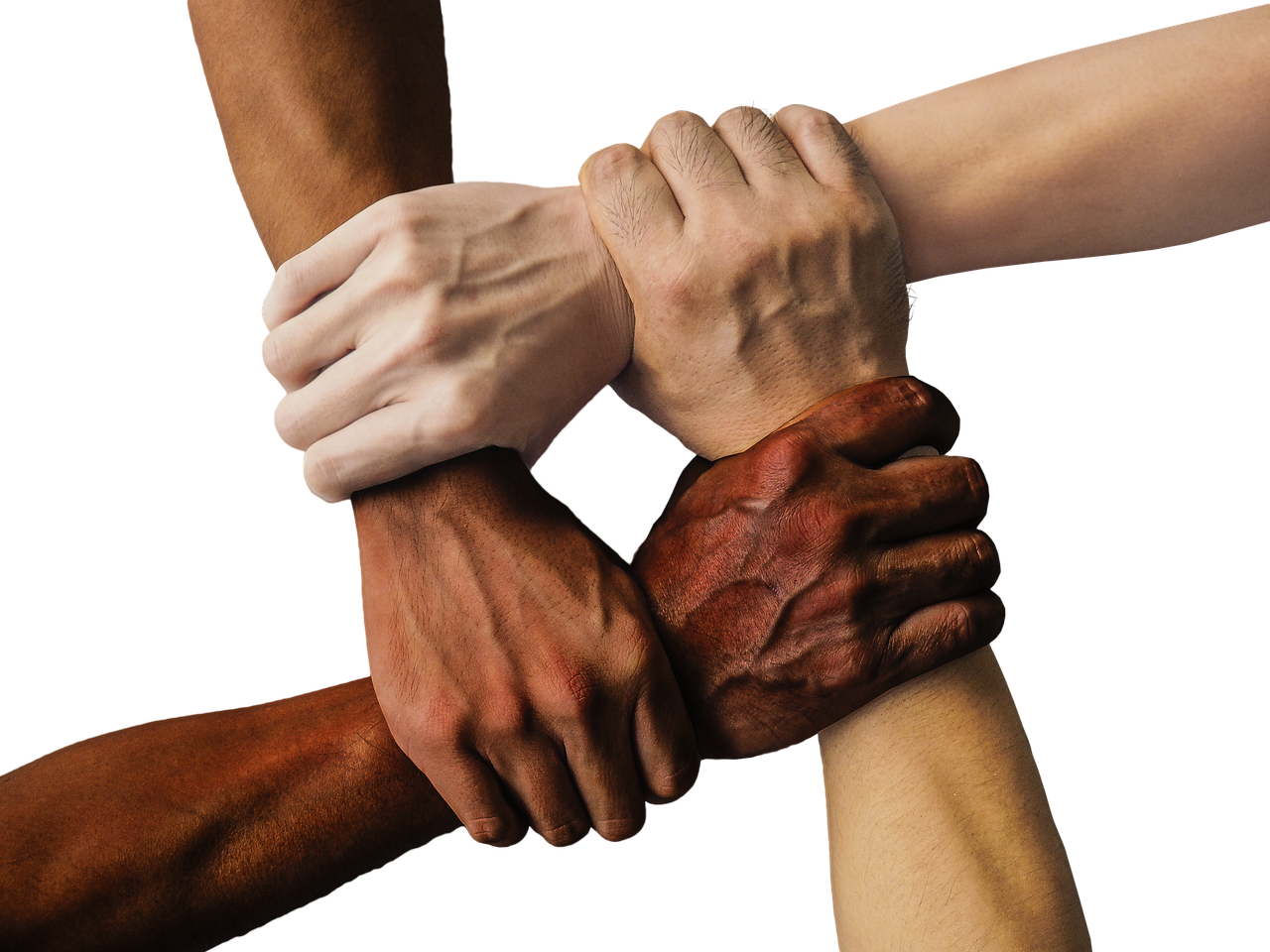 diverse characters - four hands of different races linked together