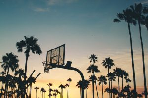 basketball hoop among palm trees